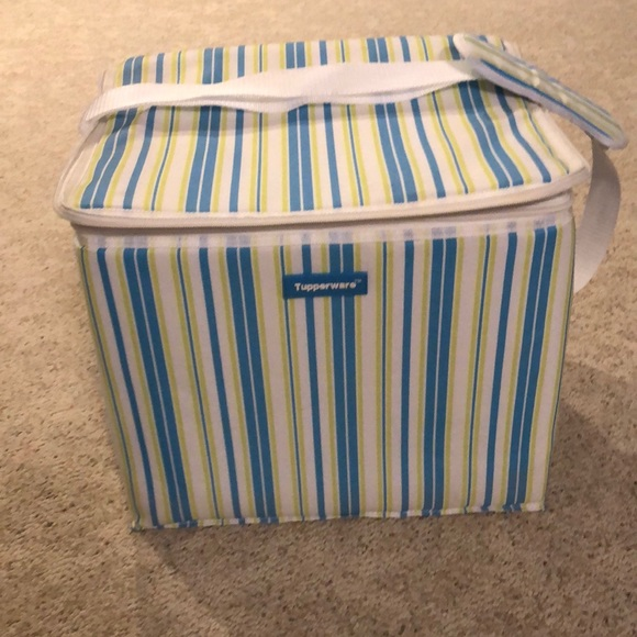 Tupperware picnic insulated bag or grocery bag